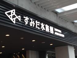 すみだ水族館&隅田川花火大会
