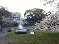 名古屋城付近