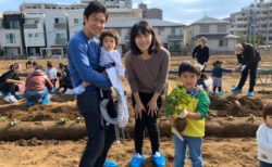 都会(葛西)で芋掘り体験