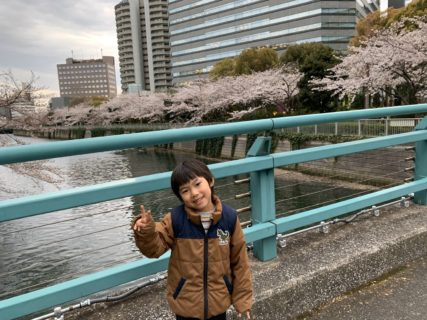 桜満開の目黒川